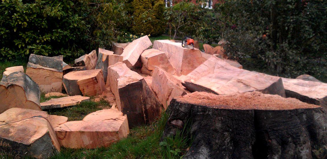 TreeAbility-Wood