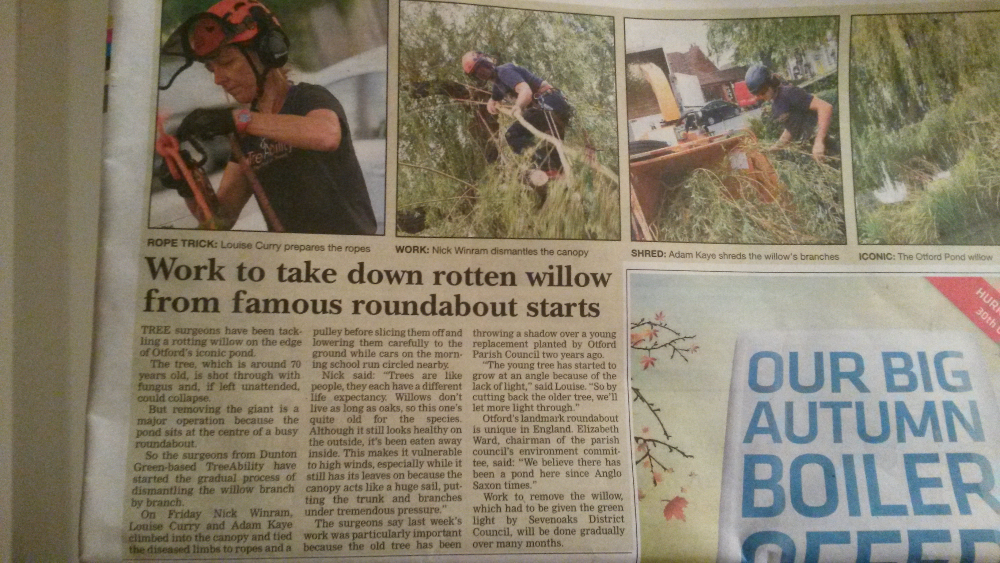 Article about TreeAbility and the Otford Pond.  Pruning the willow tree for Otford Parish Council